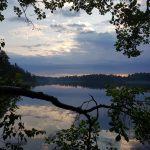 Ålsjön genom trädgrenar